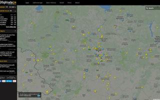 Как узнать приземлился ли самолет (статус рейса)