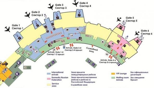 Сколько в Минске аэропортов и как добраться до города
