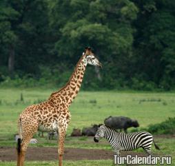 Занзибар: сезон для отдыха