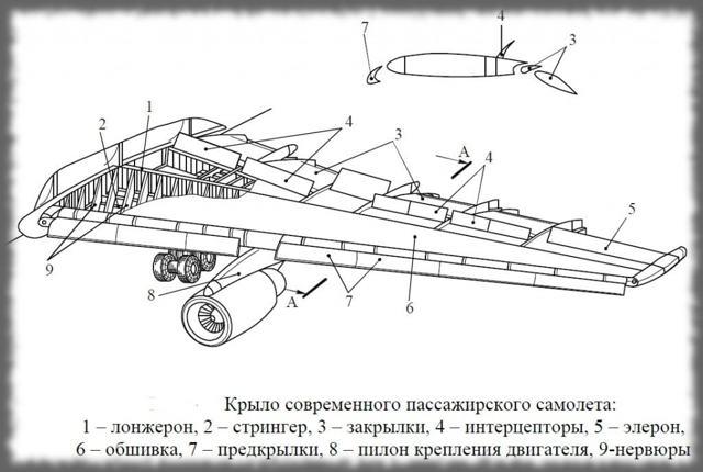 Сколько крыльев у самолета