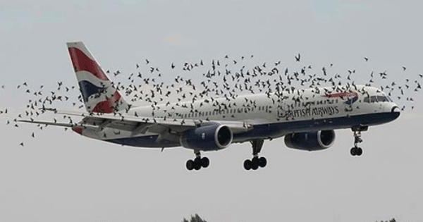 Помпаж двигателя самолета: что это